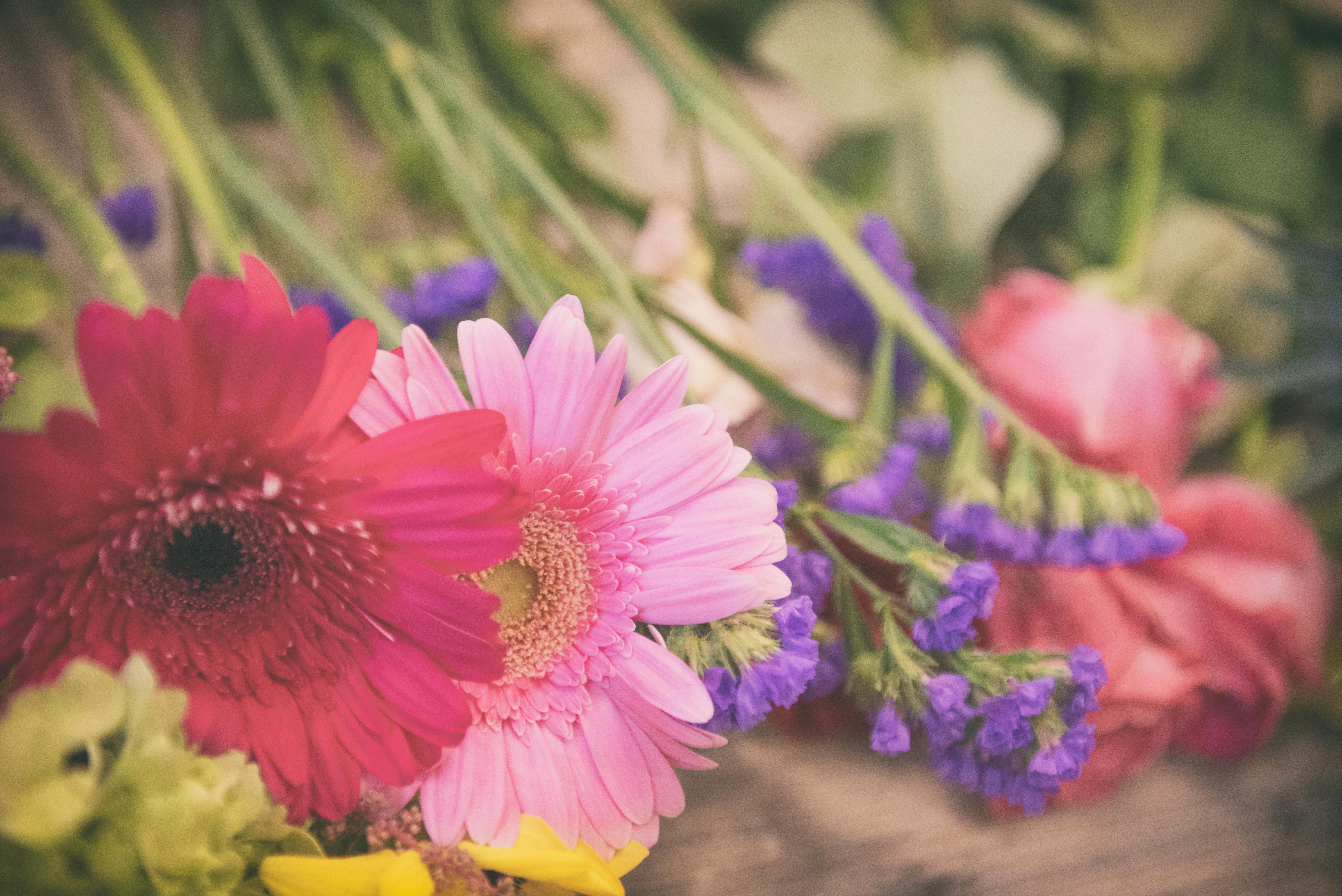 香川県の結婚式場のシェルエメール&アイスタイルの素敵な花
